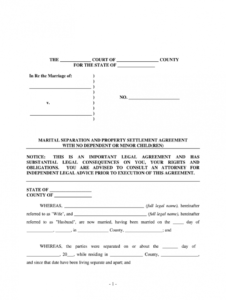 property settlement agreement  fill out and sign printable pdf template   signnow separation and property settlement agreement template