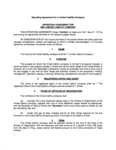 sample 30 professional llc operating agreement templates ᐅ templatelab law firm operating agreement template example
