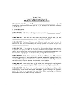 template  pre divorce agreement settlement agreement for marital agreement template sample
