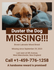 monochromatic missing dog poster template lost animal poster template sample