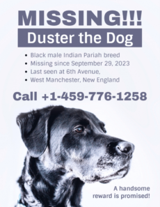 simple missing dog poster template lost animal poster template pdf
