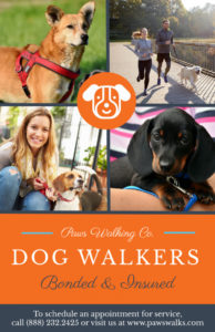 editable dog walkers poster template  mycreativeshop dog walking poster template excel