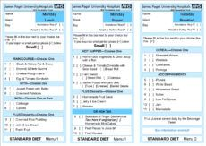 free hospital food hospital patient menu template