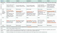 editable sample twoweek menu for long day care  healthy eating child care food menu template excel