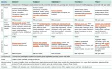 free sample twoweek menu for long day care  healthy eating child care food menu template word