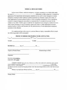 medical consent form  fill out and sign printable pdf template  signnow babysitter medical consent form template example