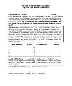 Peer Feedback Form Template