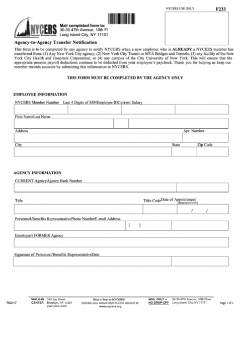 Professional Employment Agency Application Form Template Doc Example