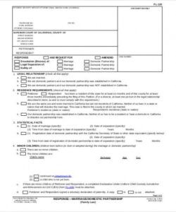 Professional Reseller Application Form Template  Example